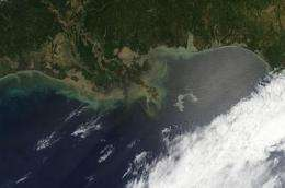 Caution required for Gulf oil spill clean-up