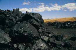 Coal from mass extinction era linked to lung cancer mystery