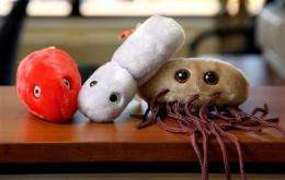 Conn. company's stuffed germ toys catching on (AP)