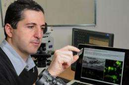 Drug developed holds promise for treatment of wounds