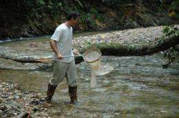 Evolution impacts environment,  study finds