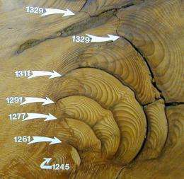 Giant Sequoias Yield Longest Fire History from Tree Rings