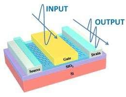 Graphene transistor