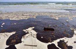Gulf oil dispersants unlikely to be endocrine disruptors and have relatively low cell toxicity