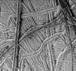 Hunting for Fossils on Europa
