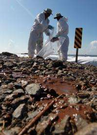 Hurricane Alex left beaches, shorelines and marshes lay smeared with thick patches of oil