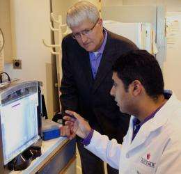 Key to treating heart ailments could be antibiotic