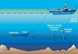 Now in broadband: Acoustic imaging of the ocean