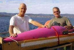 East Coast gliders yield valuable marine life data