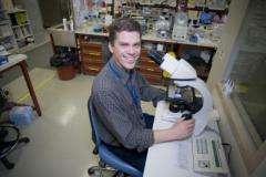 Promising candidates for malaria vaccine revealed