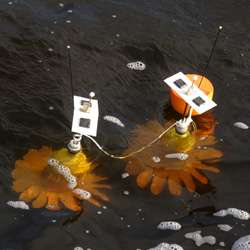Real-time electronic monitoring for coastal waters