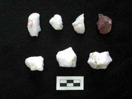 Stone tools found on southwestern Crete island