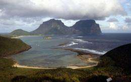 The modern reef at Lord Howe Island