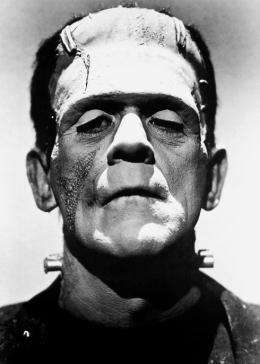 The science behind Frankenstein