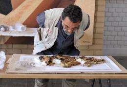 Veterinarian Enrique Angulo examines the remains of a canines