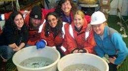 VIMS team returns to Antarctic Peninsula