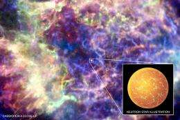 Young and getting cooler -- the early life of a neutron star