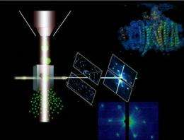 Experiment reaches biology milestone with hard X-ray laser