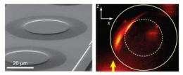 GRIN plasmonics