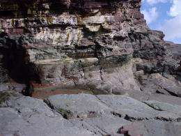 Scottish rocks reveal key point in evolution occurred 400 million years earlier