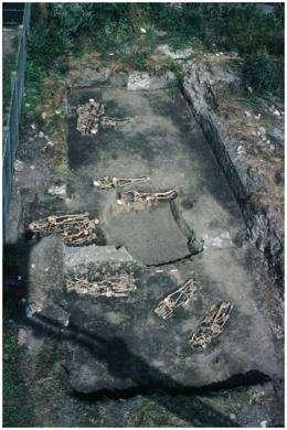 Spain's typhus epidemic revealed by 18th century skeletons