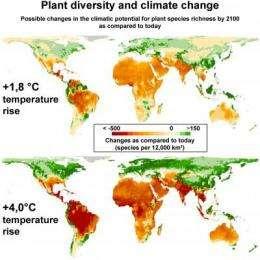 Global warming threatens plant diversity
