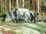 Tunguska event  - an artifact