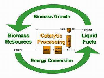 Green diesel: New process makes fuel from plants