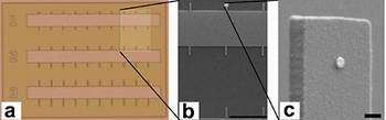 NEMS device detects the mass of a single DNA molecule