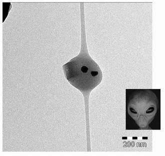 The new nanofiber looks like an alien, but has the potential to serve anti-counterfeiting purposes.