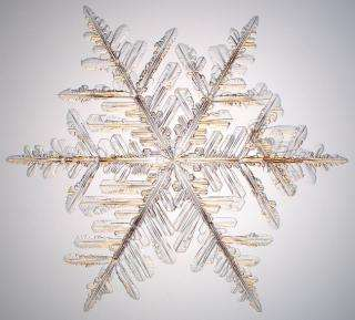 Snowflake Physicist's Photographs to Be Featured on 2006 Postage Stamps