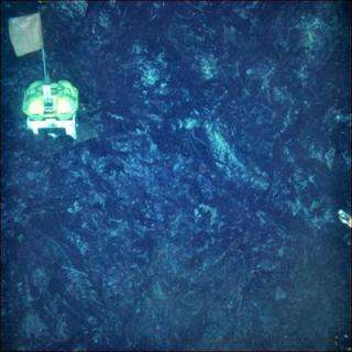 Scientists lose instruments, gain first look at seafloor formation