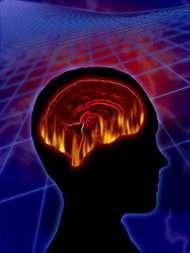 Scientists Find 'Aha!' Favors a Prepared Mind
