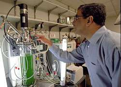 Bacteria to run our cars, warm our homes