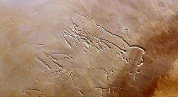 Lava tubes on Pavonis Mons