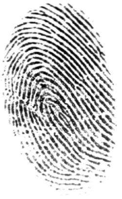 Fingerprint Advances Will Fight Cybercrime