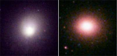 XMM-Newton reveals the origin of elements in galaxy clusters