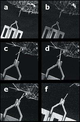 A sequence of images showing the grippers in action