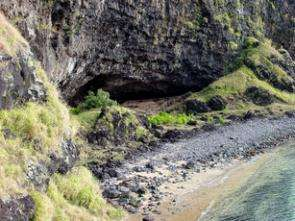 Remote Island Provides Clues on Population Growth, Environmental Degradation