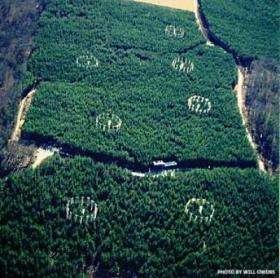 Aerial View of Free-Air Carbon Dioxide Enrichment