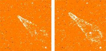 Did 'Dark Matter' Create the First Stars?