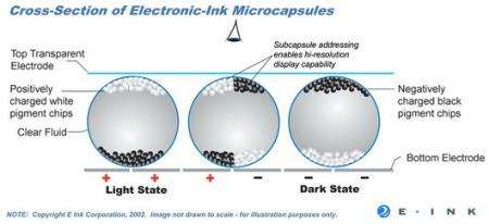 Electronic Ink - 'How It Works' Cross-Section