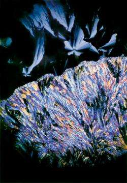 Micrograph of a metal-rich, zinc chloride-based liquid crystal.