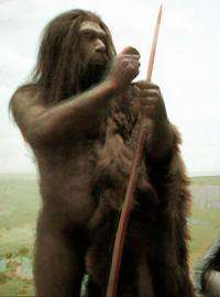 Neanderthal genome unlocks secrets of human evolution