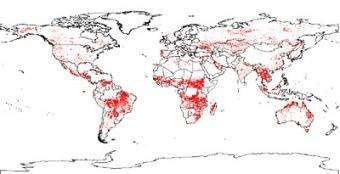 World fire maps now available online in near-real time