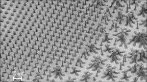Carbon Nanotube Bundle Comparisons