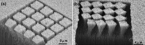 Scientists carve 3D microstructures in carbon nanotube forests