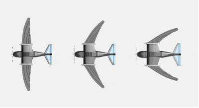 Bird sized airplane to fly like a swift