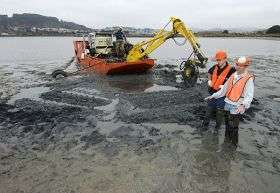 Cleanup method uses activated carbons to anchor toxins to bottom of the bay