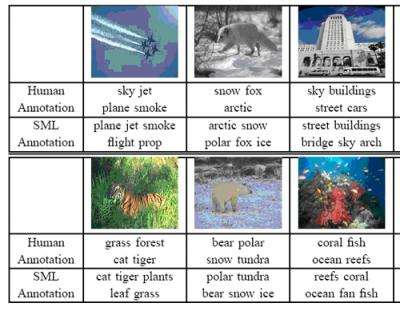 Comparison SML and Humans